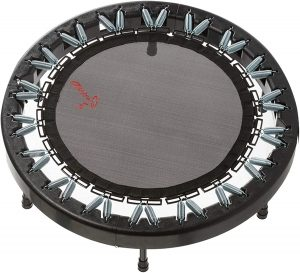 Ultimate Rebounder by Rebound Air Review